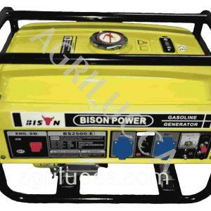 alt=Generatore BISON POWER BS2500E